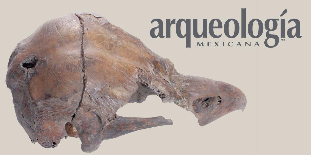 Taxidermia y cautiverio de águilas en Tenochtitlan