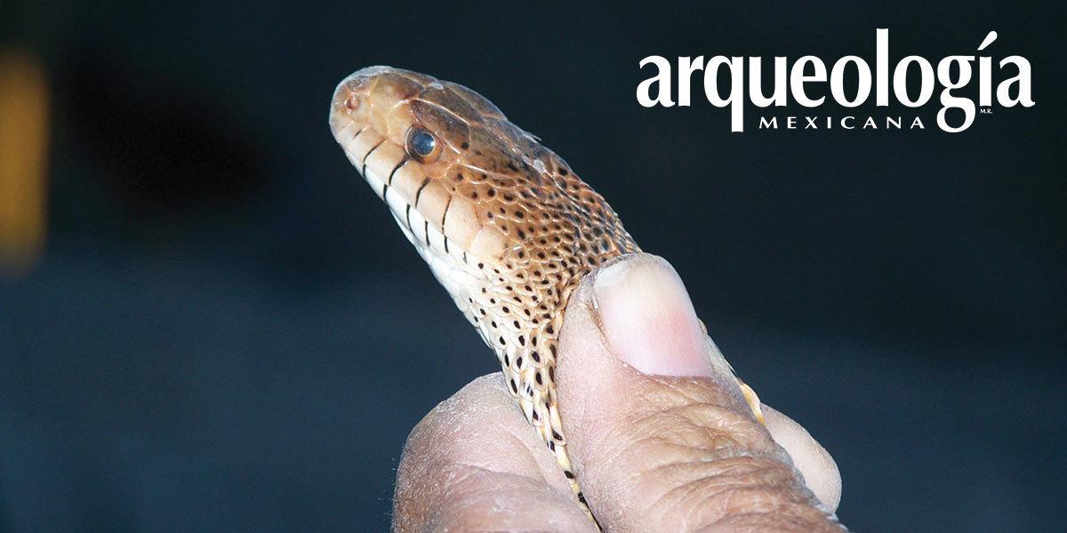 K'eña. La serpiente, entre los hñähñü del Valle del Mezquital, Hidalgo