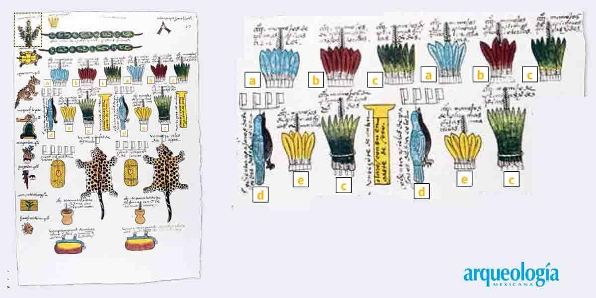 Cómo llegaban las plumas a Tenochtitlan