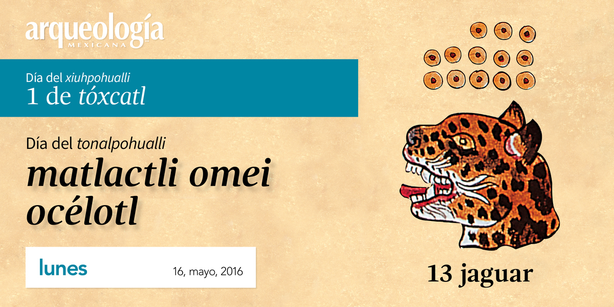 16, mayo, 2016 / 13 jaguar