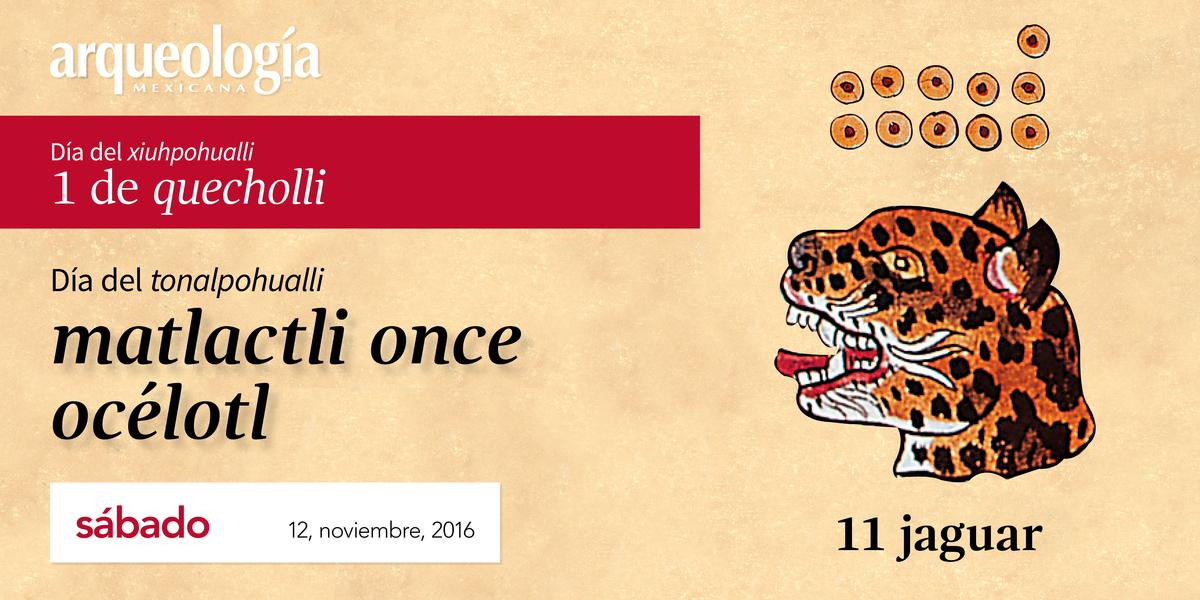 12 noviembre, 2016 /11 jaguar