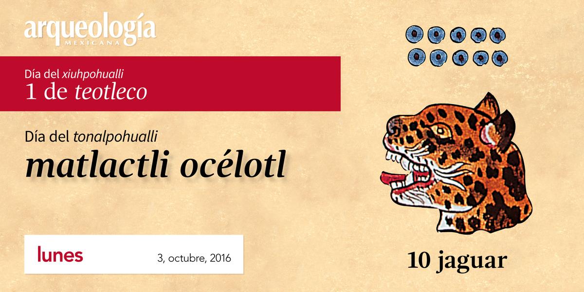 3 octubre, 2016 / 10 jaguar