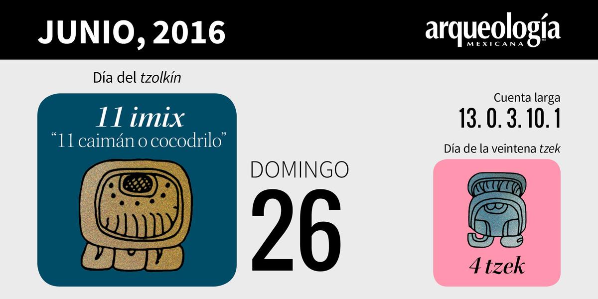 26 junio, 2016 / 11 cocodrilo
