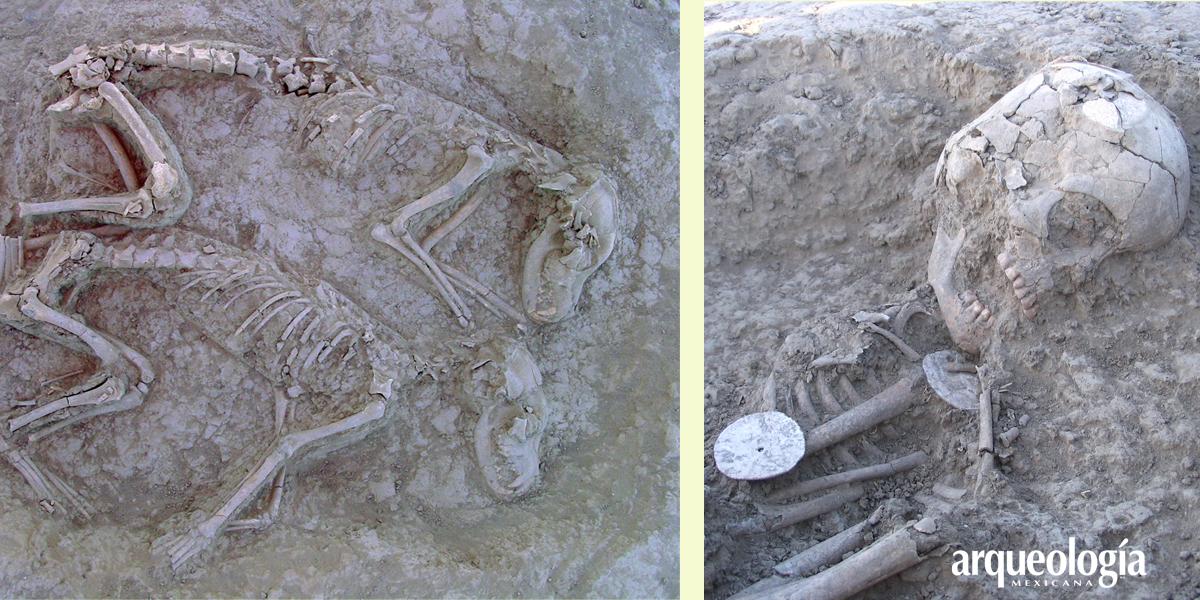 Antiguos entierros de perros