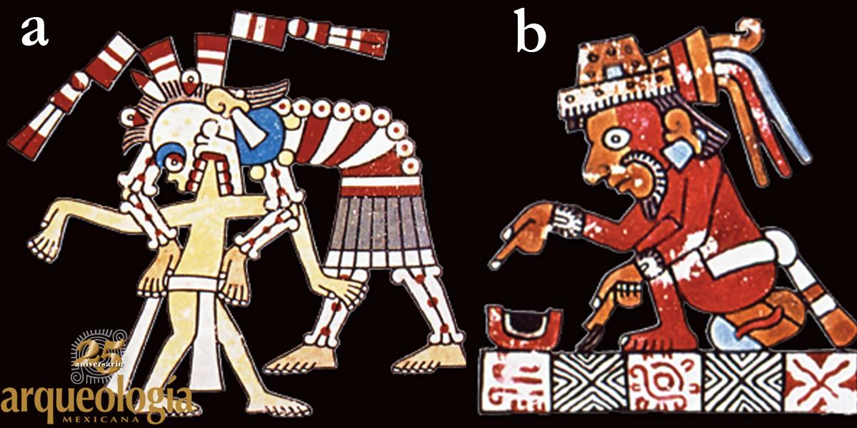 Códices prehispánicos y coloniales tempranos
