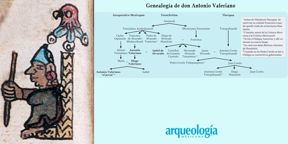 La casa real de Tenochtitlan. El gobierno de los jueces-gobernadores