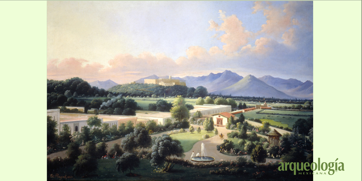 Los jardines de Chapultepec en el siglo XIX