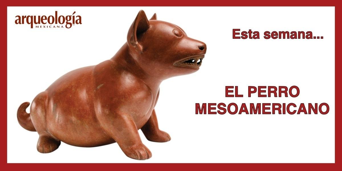 El perro mesoamericano