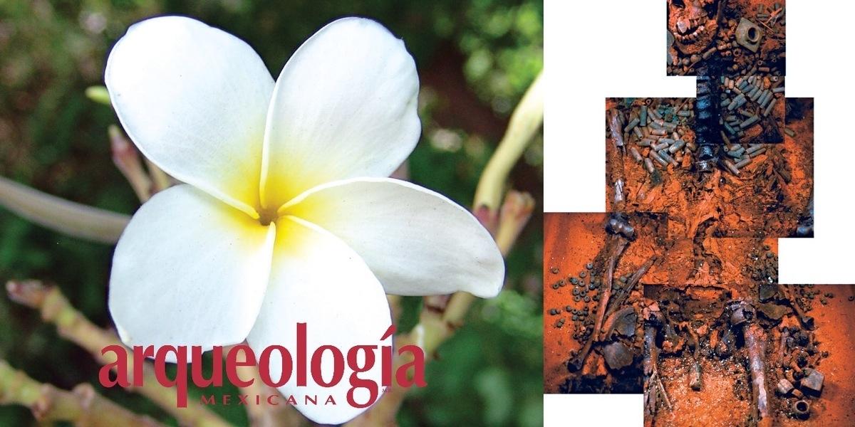 Perfumando al difunto. Fragancias y tratamientos póstumos entre la antigua aristocracia maya