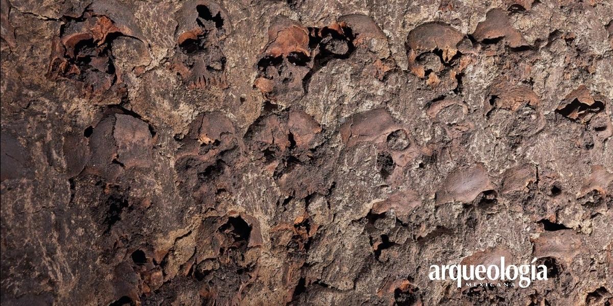 El Huei Tzompantli de Tenochtitlan | Arqueología Mexicana