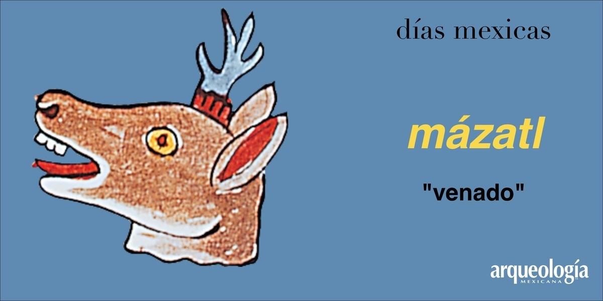 mázatl (venado)
