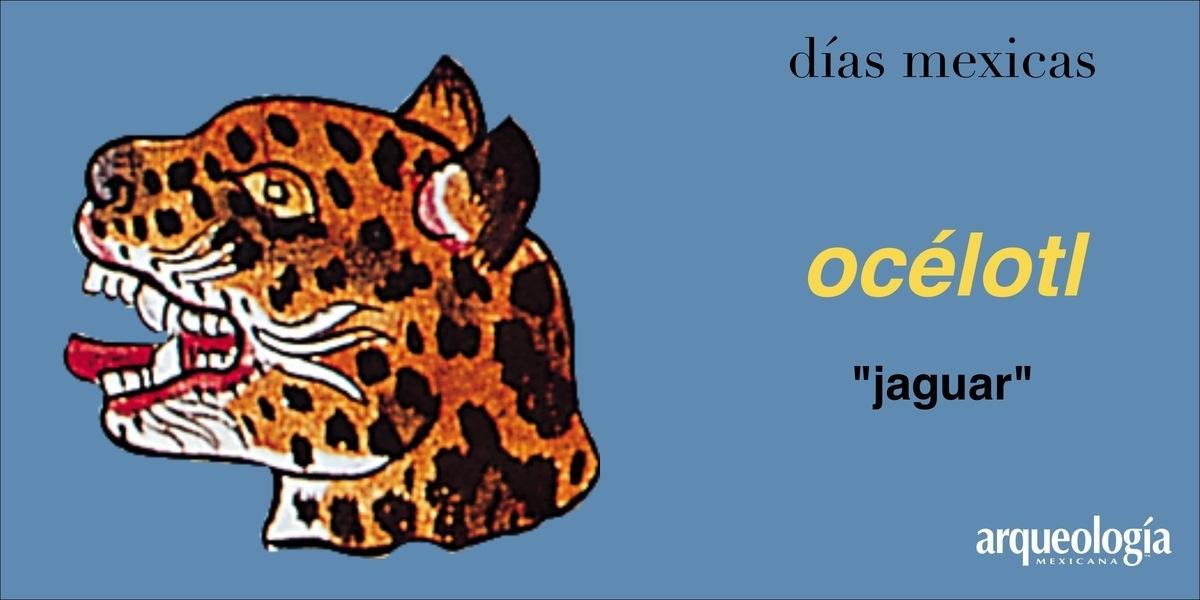 océlotl (jaguar)