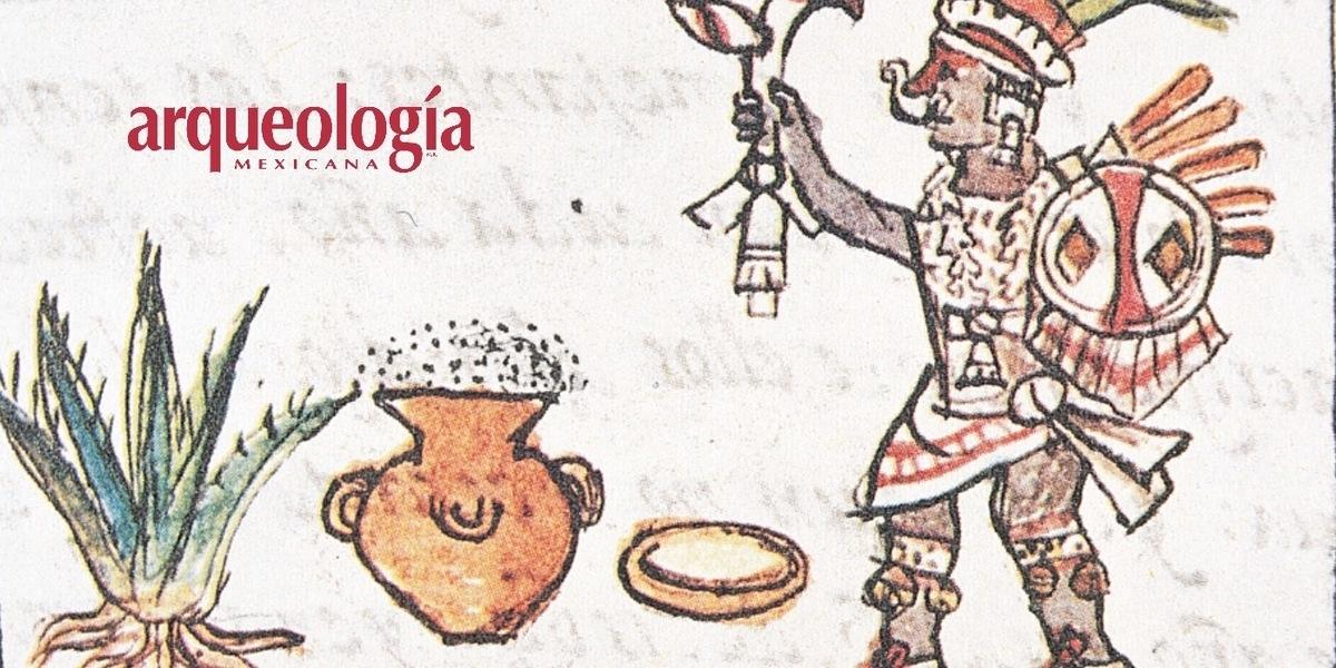 La cocina hñähñü. Entre el árbol de las maravillas, insectos, pájaros y tlacuaches…