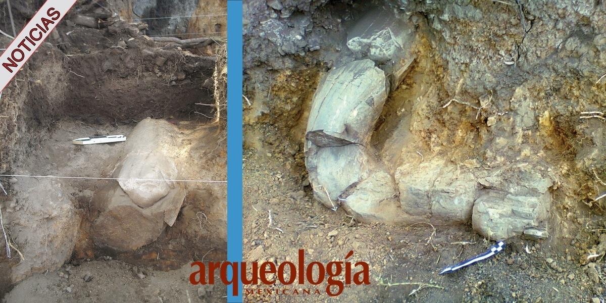 Mamut en Metepec, estado de México
