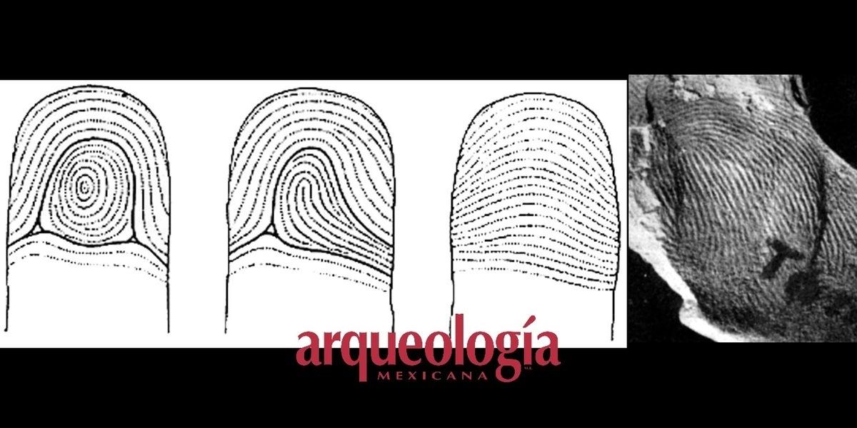 Huellas digitales en cerámica prehispánica