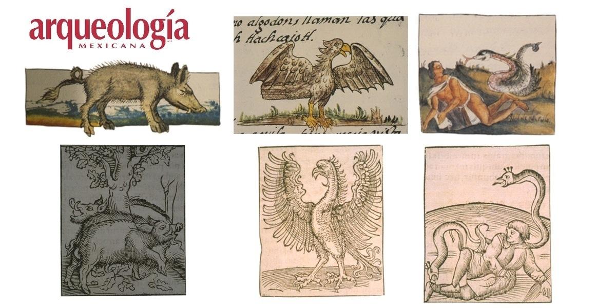 Los animales del Códice Florentino en el espejo de la tradición occidental