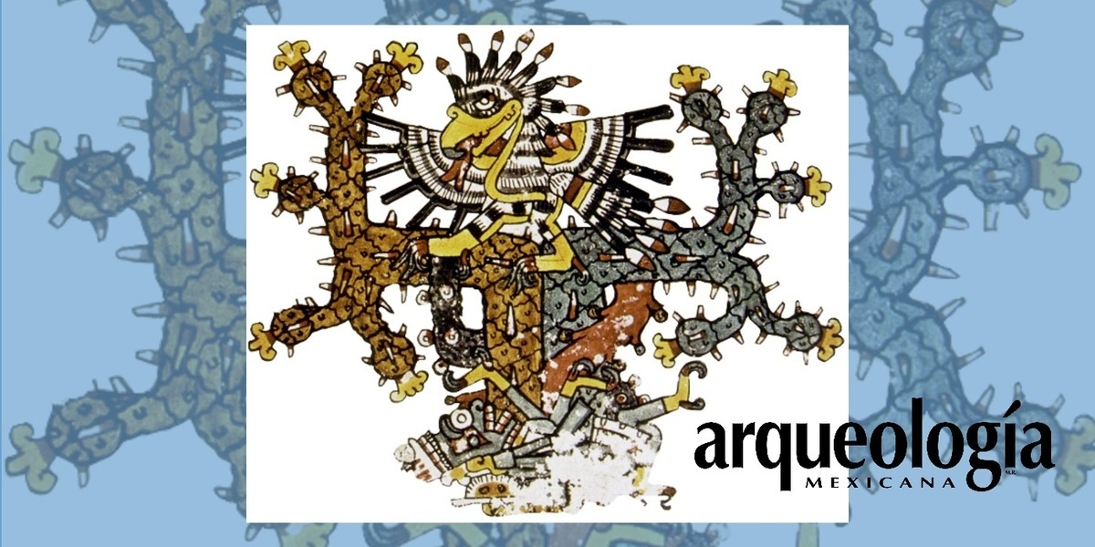 Representación y simbolismo del cuautli sagrado