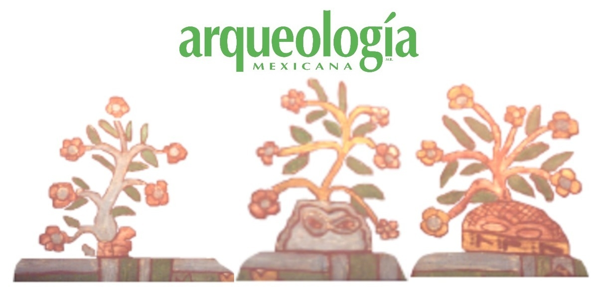 Arqueología de la tradición herbolaria