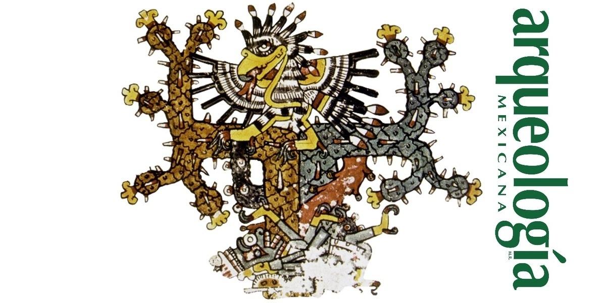 El iztaccuauhtli  y el águila mexicana ¿Cuauhtli o águila real?