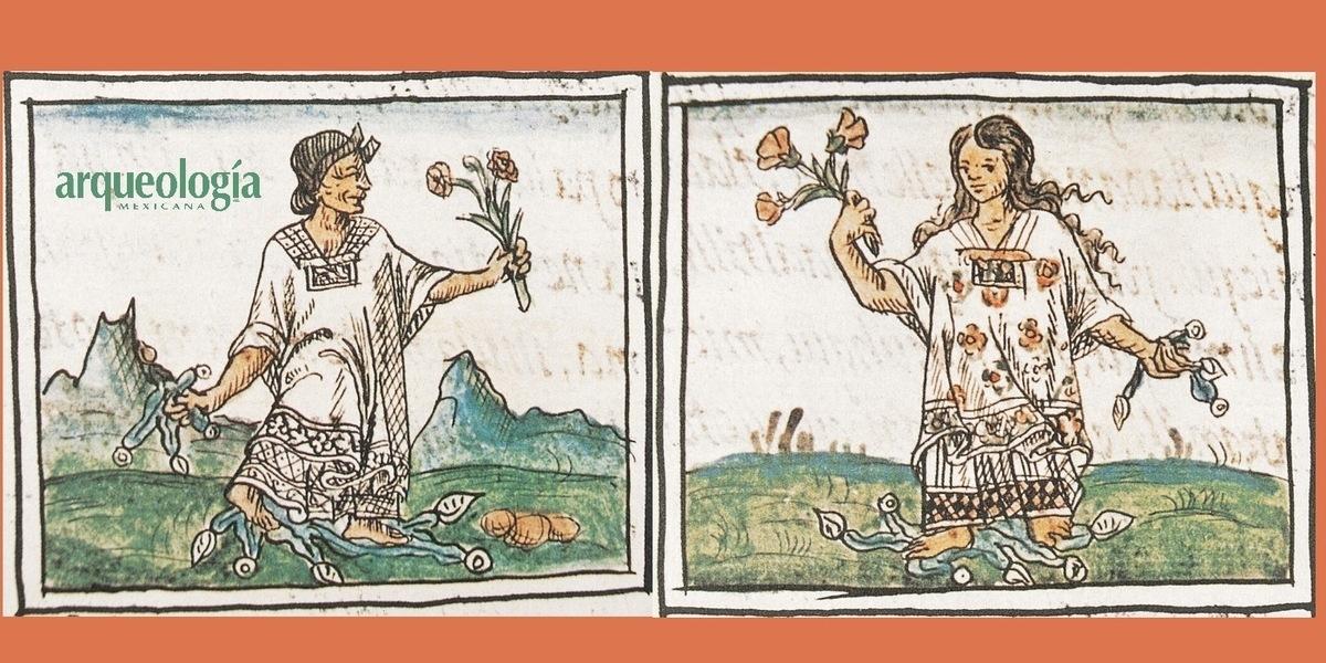 Vida cotidiana y  moral indígena en la  Historia general de las  cosas de Nueva España