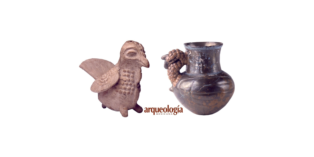 La domesticación del guajolote   Arqueología Mexicana