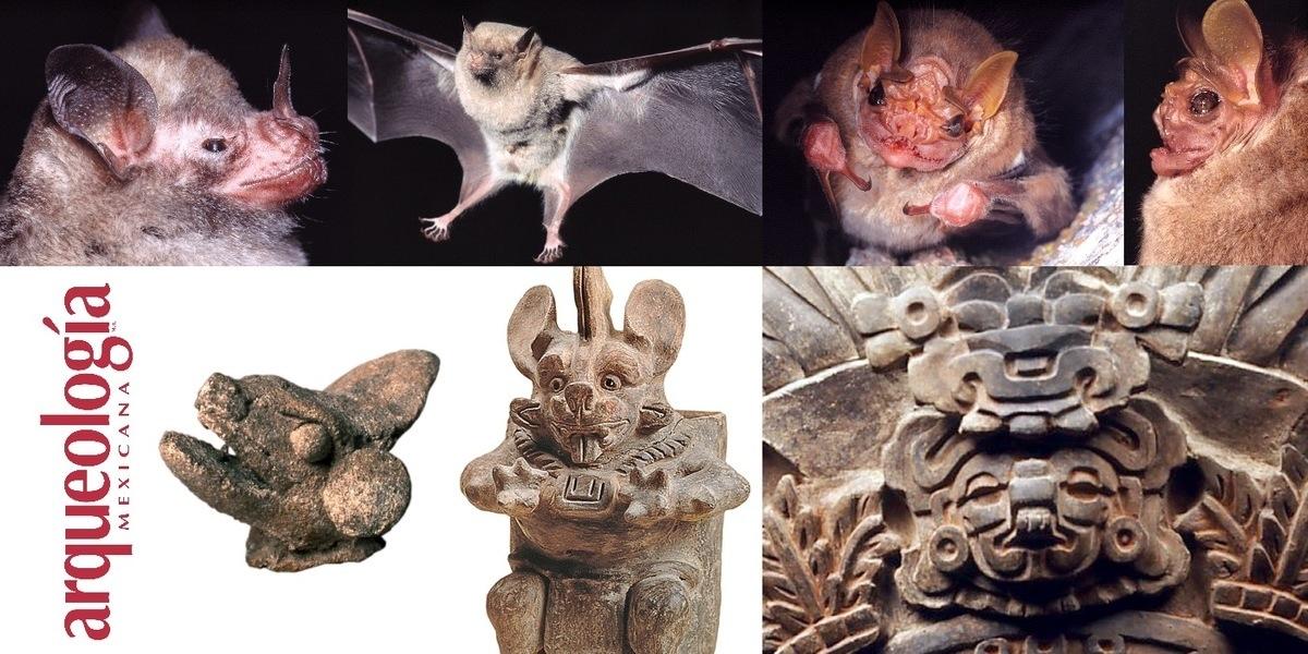 Los murciélagos en México