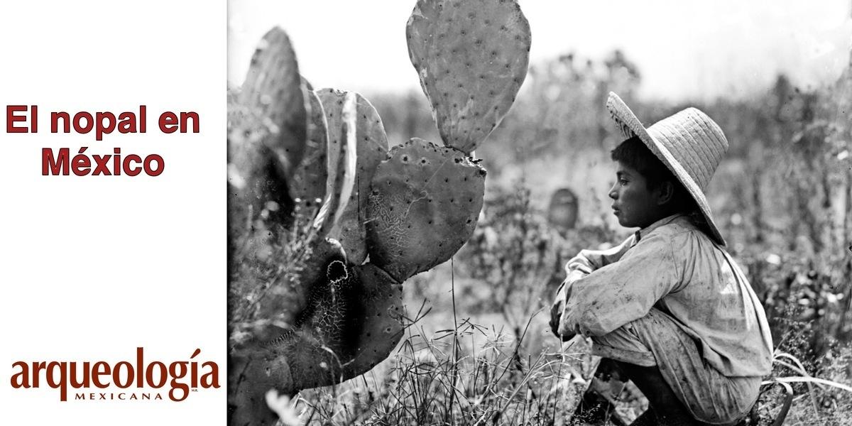 El nopal en México