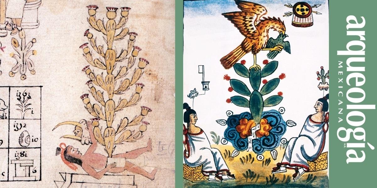 Mitología y simbolismo del nopal
