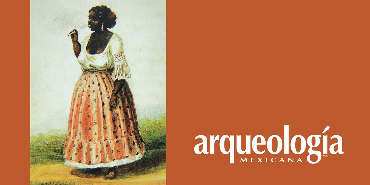 Negros, mulatos y pardos en la historia de Veracruz