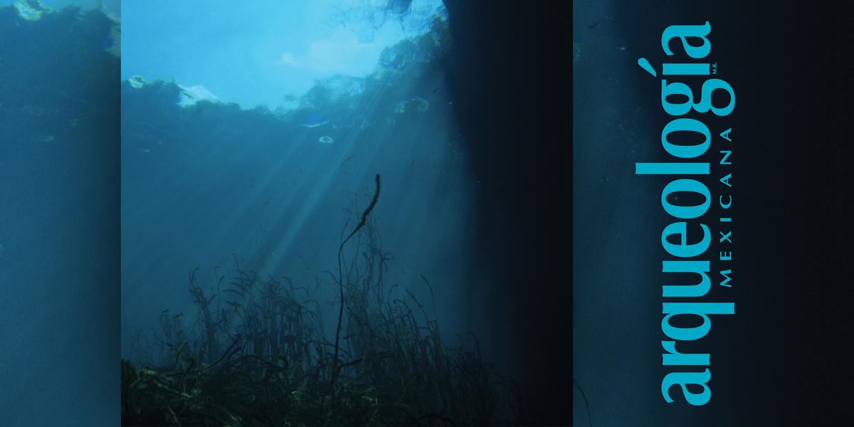 Los cenotes en el área maya