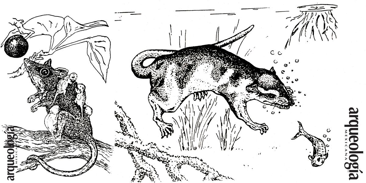 Los animales como personajes del mito