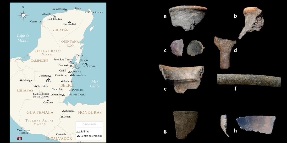 Los mayas de Belice y la sal durante el periodo Clásico