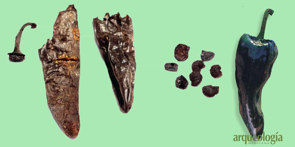 Un fruto de 7 000 años