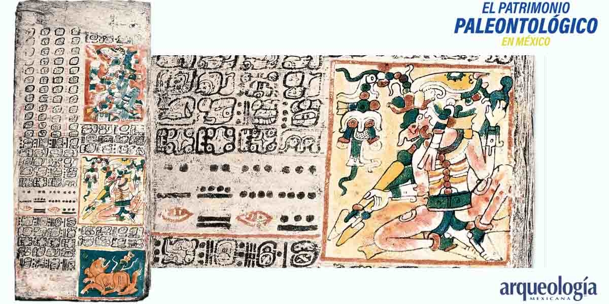 La lectura del cielo y la conquista de México
