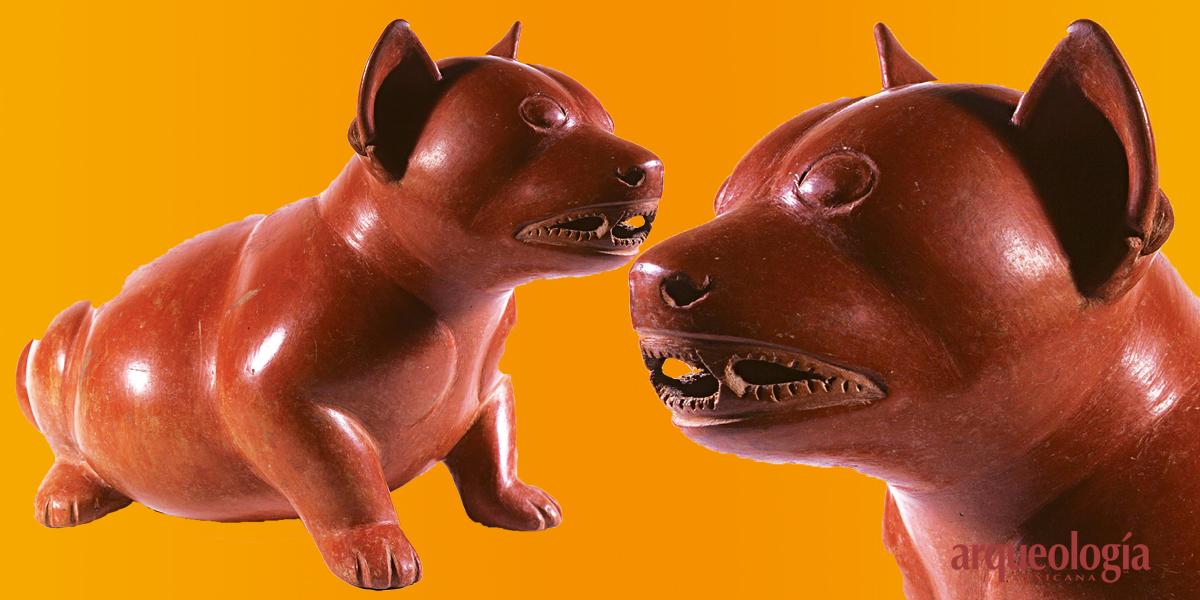 Animales en la dieta prehispánica