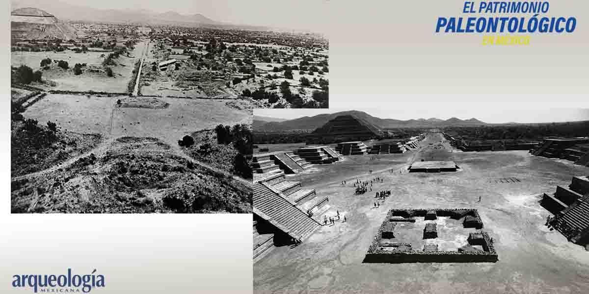 Arqueología en la Pirámide de la Luna