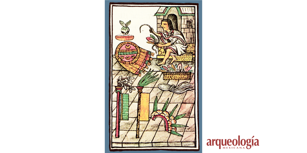 Plumas y aves en los documentos pictográficos y en las fuentes escritas en el siglo XVI