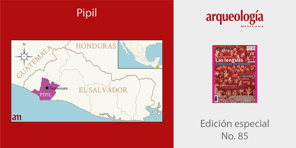 PIPIL