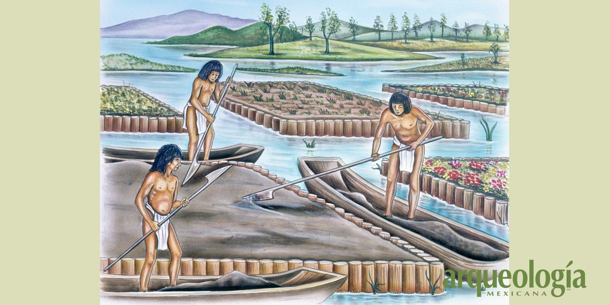 Las chinampas de México: métodos constructivos