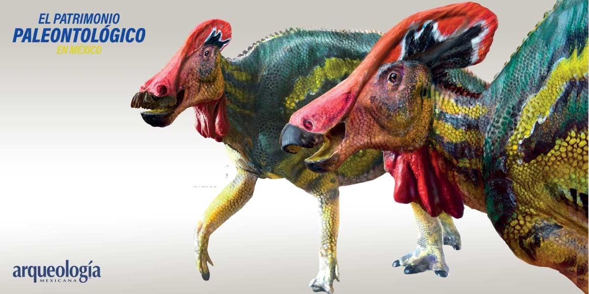 Una nueva especie de dinosaurio