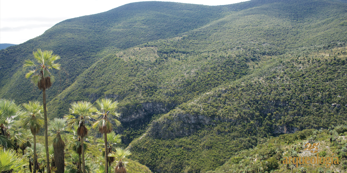 La inscripción del Valle de Tehuacán-Cuicatlán en la Lista del Patrimonio Mundial de la UNESCO