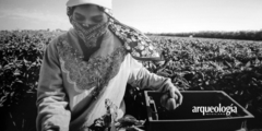 En los campos del Norte documenta la vida de trabajadores agrícolas en Estados Unidos