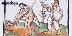 Técnicas, métodos y estrategias agrícolas
