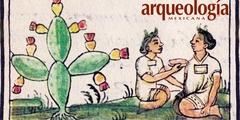 De los usos medicinales del nopal, prehispánicos y actuales