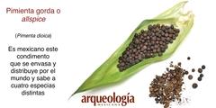 Cinco condimentos de origen mexicano