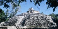 La Costa Oriental de Quintana Roo