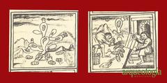 Flores e insectos, materia prima de los colores del Códice Florentino