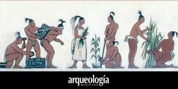 Esperanza de vida y estatura de los mayas de Palenque