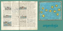 Azules en el Códice Florentino
