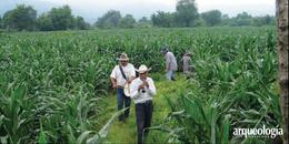 El calendario agrícola prehispánico y las fiestas cristianas